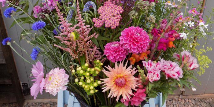 bucket of beautiful mixed flowers